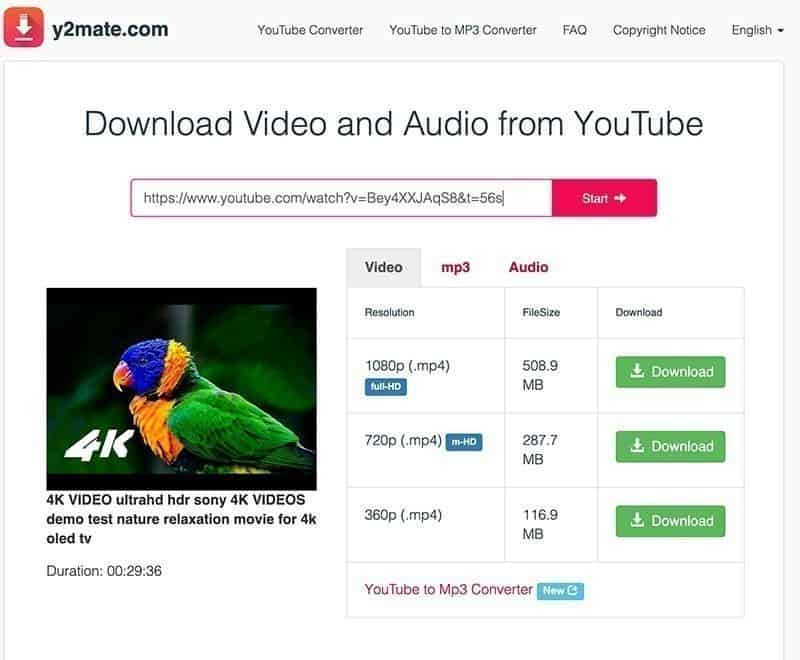 How to download YouTube videos for free | GearTek
